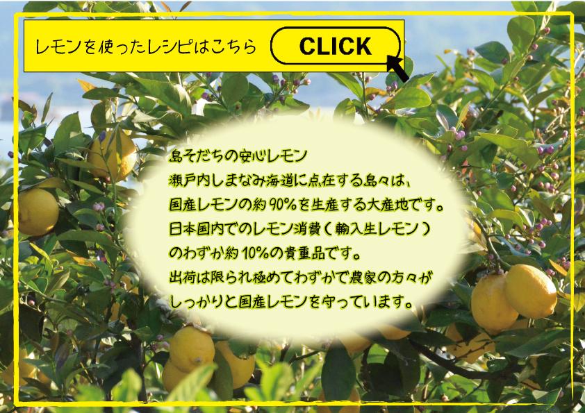 島そだちのレモンとレシピ